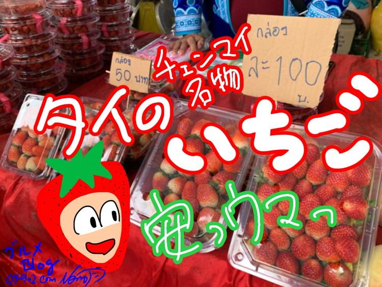 タイ・チェンマイのイチゴ激安うまい